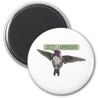 Costas Hummingbird with Banner 6 Cm Round Magnet
