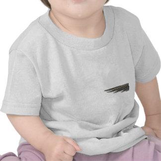 Costas Hummingbird with Banner T-shirt