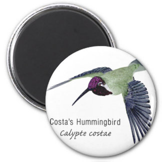 Costa's Hummingbird with Name 6 Cm Round Magnet