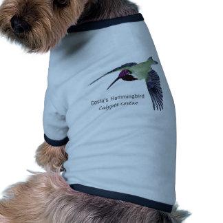 Costa's Hummingbird with Name Doggie Tee
