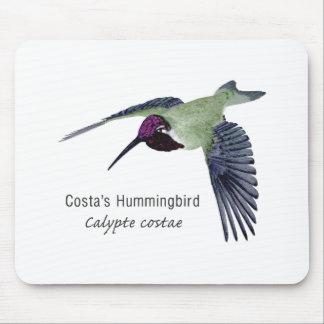 Costa's Hummingbird with Name Mousepad