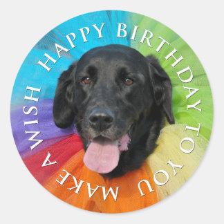 Costumed Black Lab Happy Birthday Round Sticker