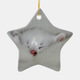 Cosy Little Nosey Ceramic Star Decoration
