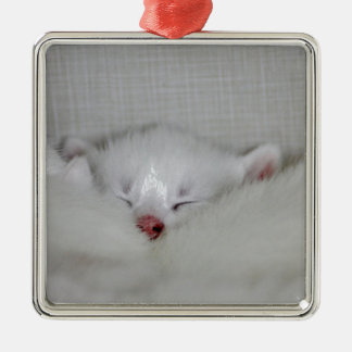 Cosy Little Nosey Silver-Colored Square Decoration