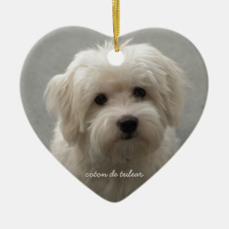 Coton de Tulear Christmas Ornament