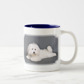 Coton de Tulear - Joci Two-Tone Coffee Mug