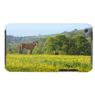 Cotswolds, UK Barely There iPod Case