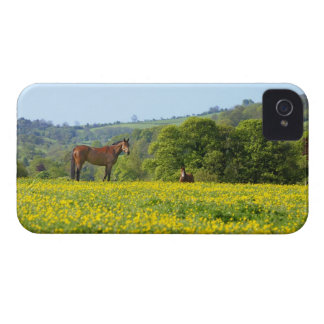 Cotswolds, UK iPhone 4 Cover