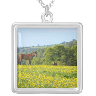Cotswolds, UK Silver Plated Necklace