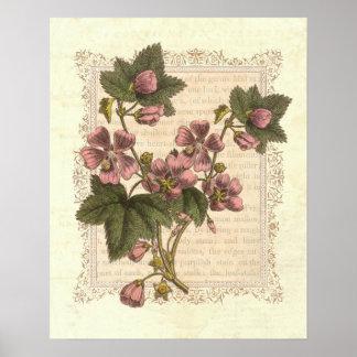 Cottage Shabby Elegance Vintage Floral Decor Poster