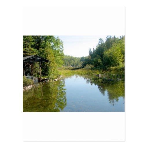 cottage swamp post card