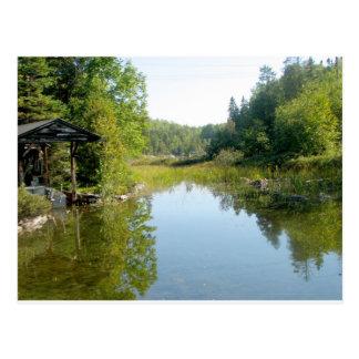 cottage swamp postcard