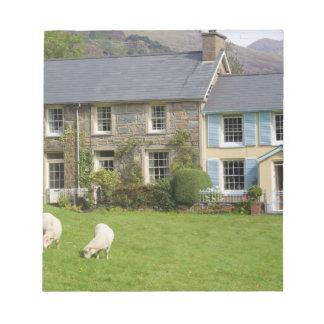 Cottages, Beddgelert, Gwynedd, Wales Notepad