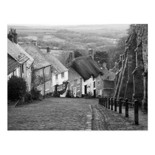 Cottages on a golden hill, Shaftesbury, Dorset, En Post Cards