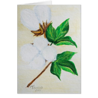 Cotton Boll Botanical 1 Card