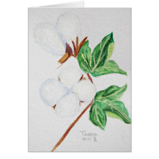 Cotton Boll Botanical Card