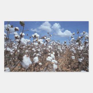 Cotton Field Rectangular Sticker