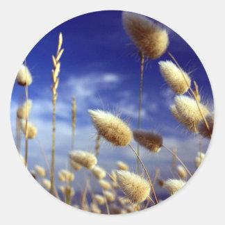 Cotton tails summer grasses round sticker