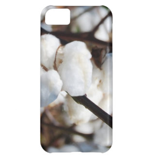 Cotton  the flower for 2nd anniversary iPhone 5C case