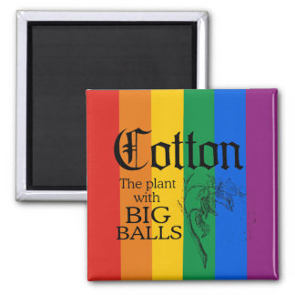 COTTON: THE PLANT WITH BIG BALLS MAGNET