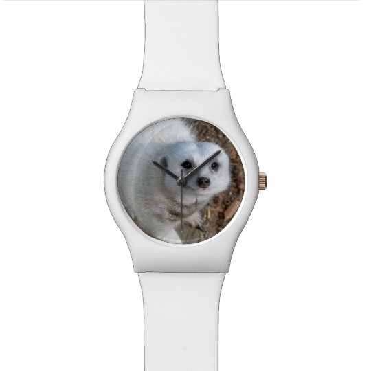 Cotton The White Meerkat, Ladies White May Watch.