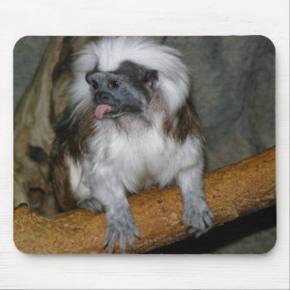 COTTON-TOP TAMARIN, mousepad