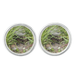 Cottontail Rabbit Babies Cuff Links