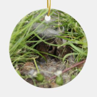 Cottontail Rabbit Babies Round Ceramic Decoration