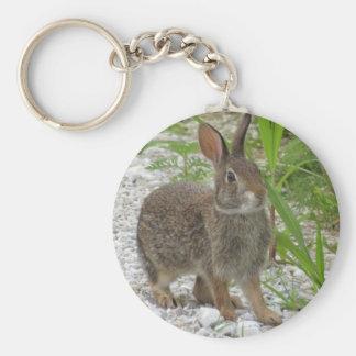 Cottontail Rabbit Basic Round Button Key Ring