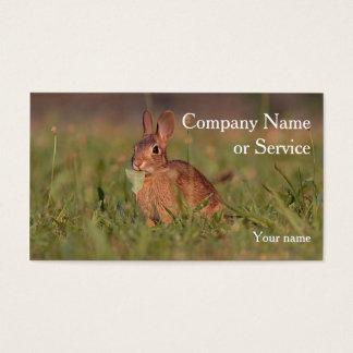 Cottontail rabbit business card