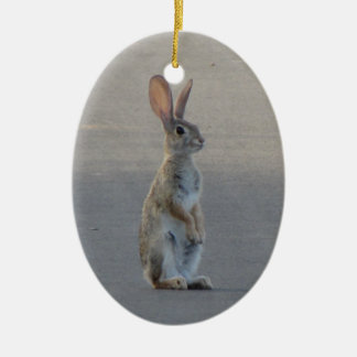 Cottontail Rabbit Christmas Ornament
