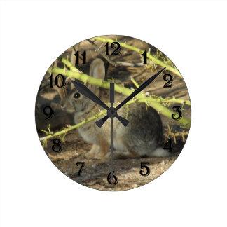 Cottontail Rabbit Clock