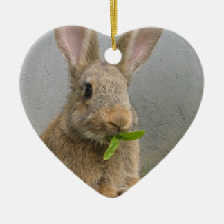Cottontail Rabbit Ornament