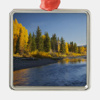 Cottonwood trees reflected in Pacific Creek Christmas Ornament