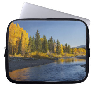 Cottonwood trees reflected in Pacific Creek Laptop Sleeve