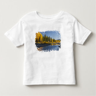 Cottonwood trees reflected in Pacific Creek Shirts