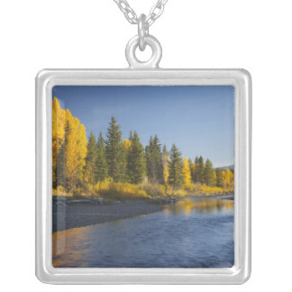 Cottonwood trees reflected in Pacific Creek Silver Plated Necklace