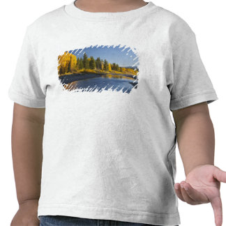 Cottonwood trees reflected in Pacific Creek Tee Shirt