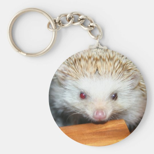 Cotty hedgehog basic round button key ring
