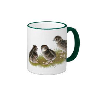 Coturnix Quail Chicks Ringer Mug