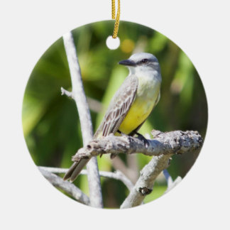 Couch's Kingbird of the Yucatan Christmas Ornament