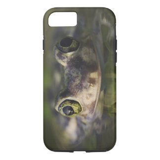 Couch's Spadefoot, Scaphiopus couchii, adult, iPhone 8/7 Case