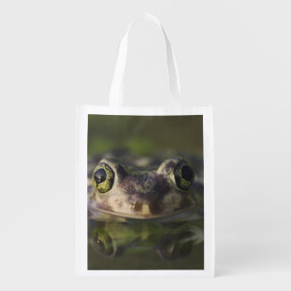 Couch's Spadefoot, Scaphiopus couchii, adult, Reusable Grocery Bag