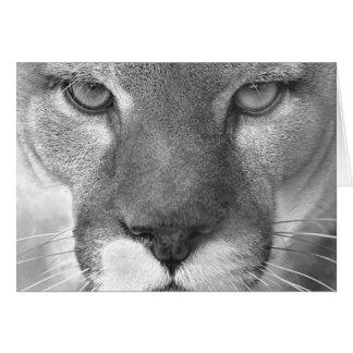 Cougar #1-Greeting card