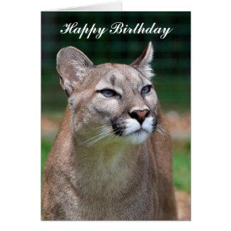 Cougar beautiful photo happy birthday card