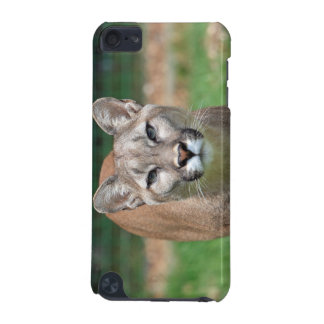 Cougar beautiful photo ipod touch 4G case iPod Touch (5th Generation) Cases