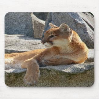 Cougar Close Up Mousepad