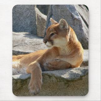 Cougar Close Up Mouse Pad