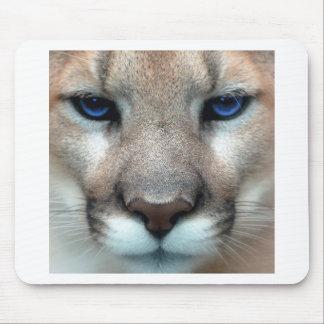 Cougar cub mouse mat
