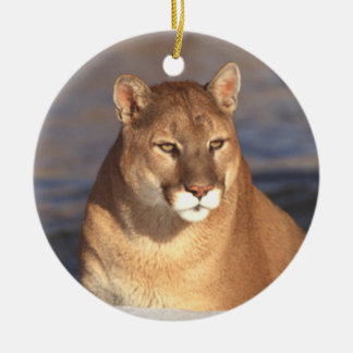 Cougar Face Ornament